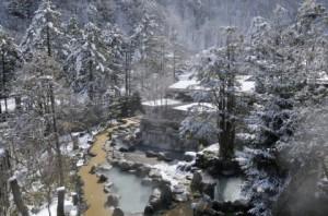 ひらゆの森(冬)